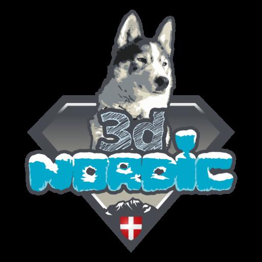 logo 3d Nordic